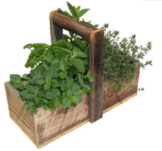 Rustic Basket with seasonal herbs